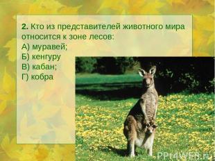 2. Кто из представителей животного мира относится к зоне лесов: А) муравей; Б) к