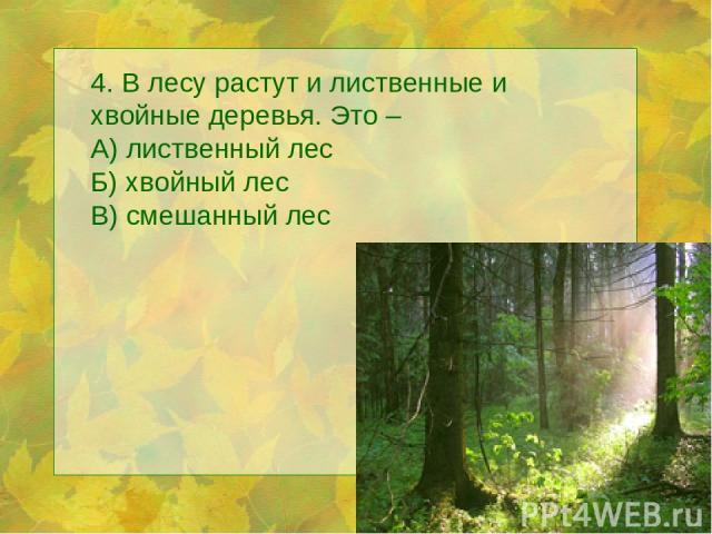 4. В лесу растут и лиственные и хвойные деревья. Это – А) лиственный лес Б) хвойный лес В) смешанный лес