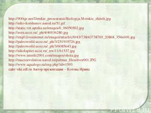 http://900igr.net/Detskie_prezentatsii/Biologija.Morskie_zhiteli.jpg http://niko