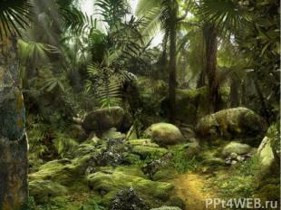 Слово «динозавры» сгреческого языка переводится как «ужасные ящеры».