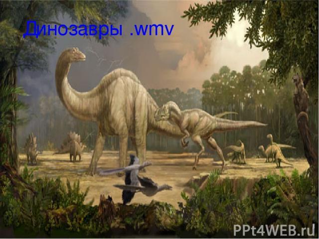 Динозавры .wmv