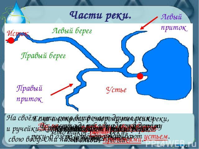 Части реки. Как называют начало реки? Исток Что такое устье реки? То место, где река впадает в другую реку, в озеро или море, называют устьем. Устье Что такое русло реки? Русло –это углубление, по которому течёт река. У реки есть правый и левый бере…