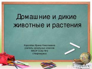 Домашние и дикие животные и растения Королёва Ирина Николаевна учитель начальных