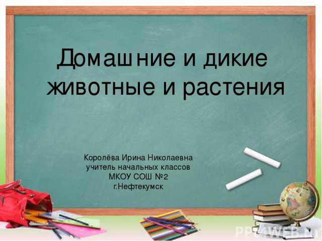 Домашние и дикие животные и растения Королёва Ирина Николаевна учитель начальных классов МКОУ СОШ №2 г.Нефтекумск