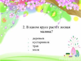 2. В каком ярусе растёт лесная малина? деревьев кустарников трав мхов