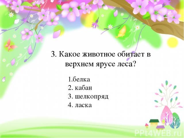 3. Какое животное обитает в верхнем ярусе леса? 1.белка 2. кабан 3. шелкопряд 4. ласка