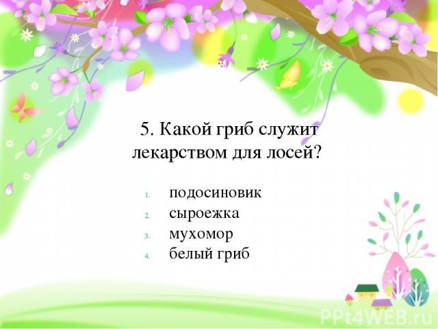 5. Какой гриб служит лекарством для лосей? подосиновик сыроежка мухомор белый гриб