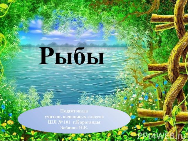 Рыбы Подготовила учитель начальных классов ШЛ № 101 г.Караганды Зобнина И.Е.