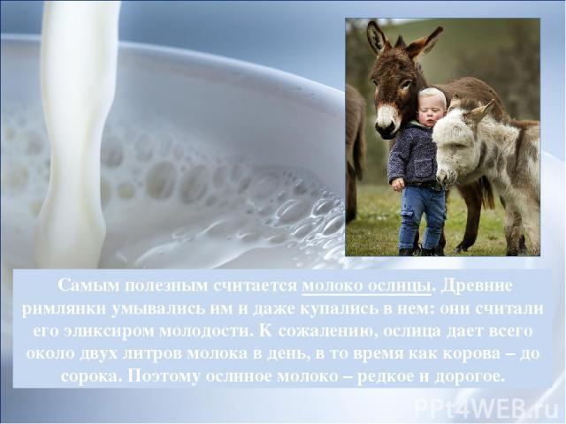 Самым полезным считается молоко ослицы. Древние римлянки умывались им и даже купались в нем: они считали его эликсиром молодости. К сожалению, ослица дает всего около двух литров молока в день, в то время как корова – до сорока. Поэтому ослиное моло…