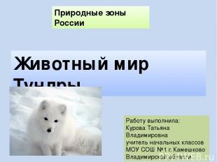 Природные зоны России Животный мир Тундры Работу выполнила: Курова Татьяна Влади