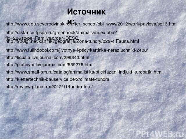 Источники: http://www.edu.severodvinsk.ru/after_school/obl_www/2012/work/pavlova/sp13.html http://distance.tgspa.ru/greenbook/animals/index.php?fid=22&stype=Family&order=DESC http://900igr.net/kartinki/geografija/Zona-tundry/029-4.Fauna.html http://…