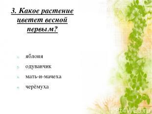 3. Какое растение цветет весной первым? яблоня одуванчик мать-и-мачеха черёмуха