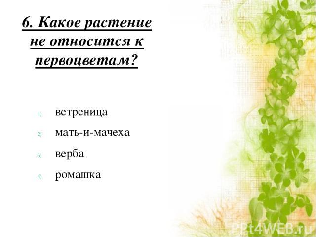 6. Какое растение не относится к первоцветам? ветреница мать-и-мачеха верба ромашка
