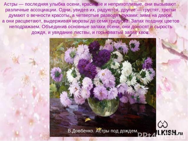 Астры — последняя улыбка осени, красивые и неприхотливые, они вызывают различные ассоциации. Одни, увидев их, радуются, другие — грустят, третьи думают о вечности красоты, а четвертые разводят руками: зима на дворе, а они расцветают, выдерживая моро…