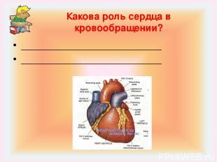 Какова роль сердца в кровообращении? __________________________ ________________
