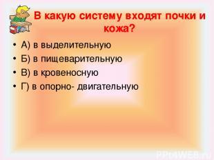В какую систему входят почки и кожа? А) в выделительную Б) в пищеварительную В)