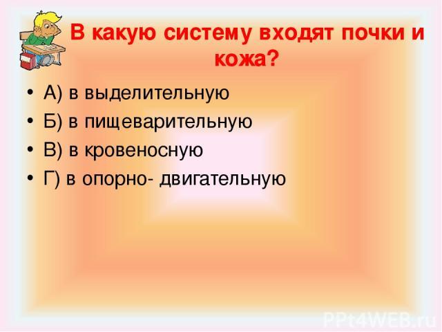 В какую систему входят почки и кожа? А) в выделительную Б) в пищеварительную В) в кровеносную Г) в опорно- двигательную