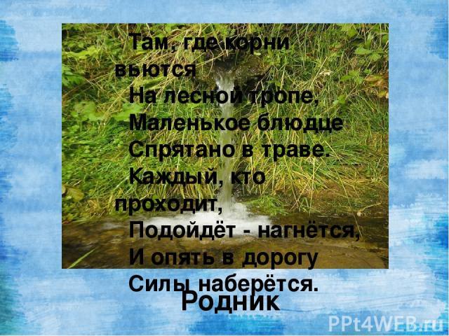 Там, где корни вьются На лесной тропе, Маленькое блюдце Спрятано в траве. Каждый, кто проходит, Подойдёт - нагнётся, И опять в дорогу Силы наберётся. Родник
