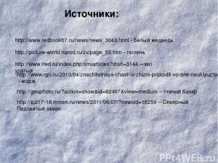 http://www.redbook67.ru/news/news_3043.html - белый медведь http://picture-world