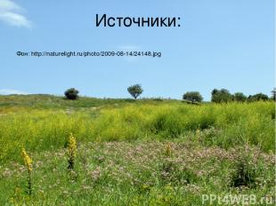 Источники: Фон: http://naturelight.ru/photo/2009-08-14/24148.jpg