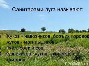 Санитарами луга называют: А. Жуков - навозников, божьих коровок, жуков - могильщ