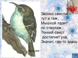 Чернокрылый, красногрудый, И зимой найдет приют: Не боится он простуды – С пе