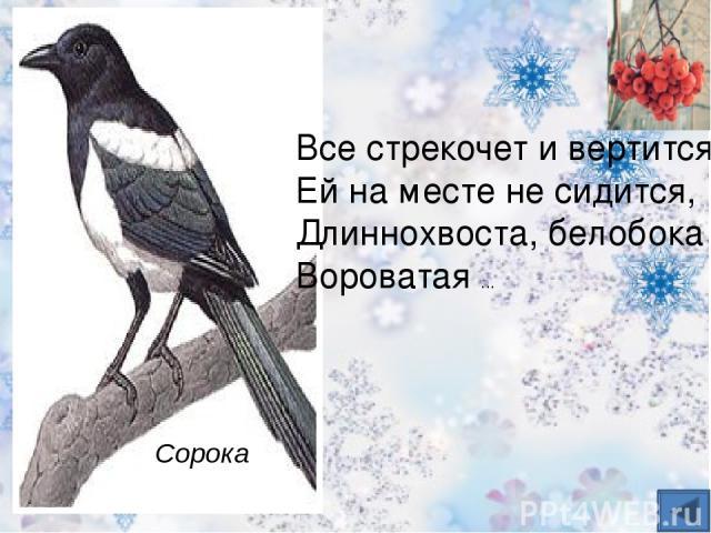 Кар-кар-кар! – кричит плутовка. Ну и ловкая воровка! Все блестящие вещицы Очень любит эта птица! И она вам всем знакома, Как зовут ее? ворона