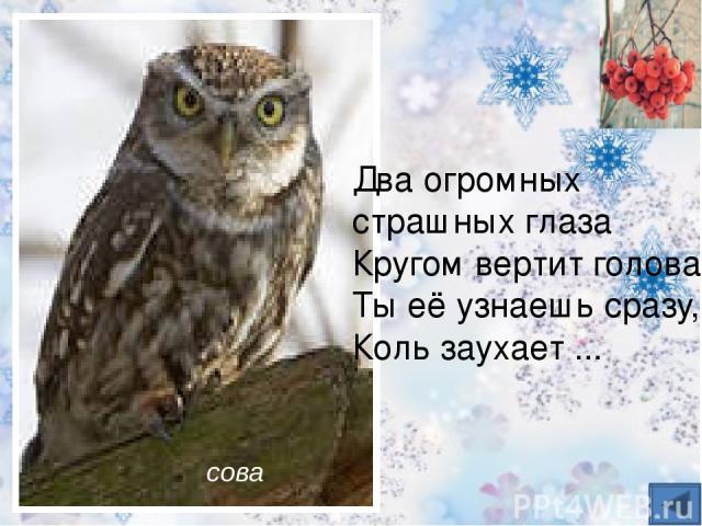 Эту птицу каждый знает, В теплый край не улетает Эта птица - круглый год. Во дворе у нас живет И чирикает она Громко с самого утра: - Просыпайтесь поскорей. - Всех торопит… Воробей