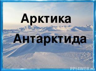 Арктика Антарктида