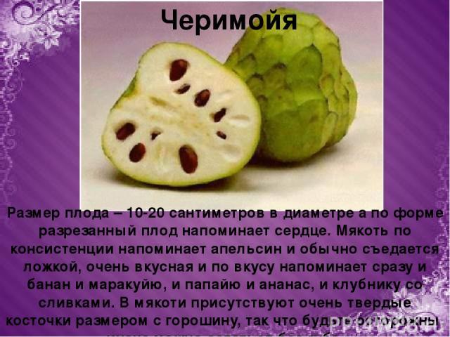 Черимойя Размер плода – 10-20 сантиметров в диаметре а по форме разрезанный плод напоминает сердце. Мякоть по консистенции напоминает апельсин и обычно съедается ложкой, очень вкусная и по вкусу напоминает сразу и банан и маракуйю, и папайю и ананас…