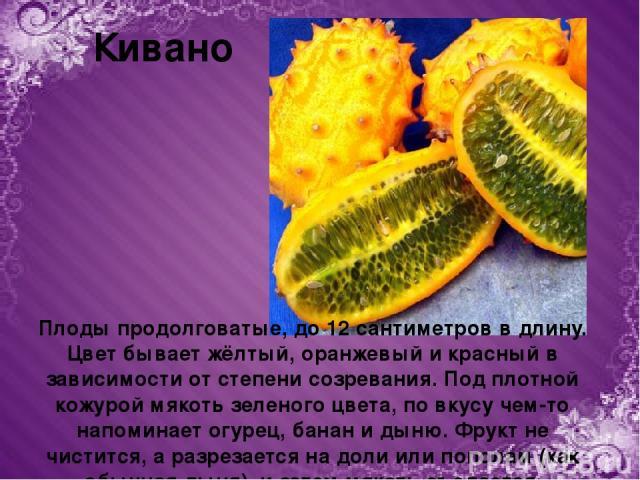 Кивано Плоды продолговатые, до 12 сантиметров в длину. Цвет бывает жёлтый, оранжевый и красный в зависимости от степени созревания. Под плотной кожурой мякоть зеленого цвета, по вкусу чем-то напоминает огурец, банан и дыню. Фрукт не чистится, а разр…