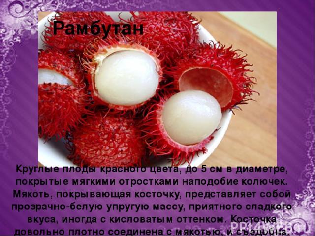 Рамбутан Круглые плоды красного цвета, до 5 см в диаметре, покрытые мягкими отростками наподобие колючек. Мякоть, покрывающая косточку, представляет собой прозрачно-белую упругую массу, приятного сладкого вкуса, иногда с кисловатым оттенком. Косточк…