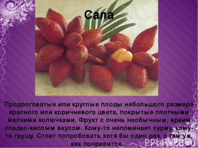 Продолговатые или круглые плоды небольшого размера красного или коричневого цвета, покрытые плотными мелкими колючками. Фрукт с очень необычным, ярким сладко-кислым вкусом. Кому-то напоминает хурму, кому-то грушу. Стоит попробовать хотя бы один раз,…