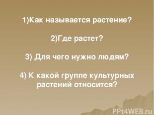 1)Как называется растение? 2)Где растет? 3) Для чего нужно людям? 4) К какой гру