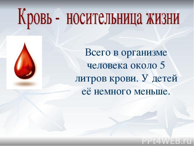 Всего в организме человека около 5 литров крови. У детей её немного меньше.