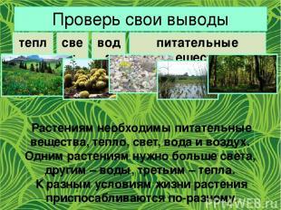 Проверь свои выводы тепло свет вода питательные вещества Растениям необходимы пи