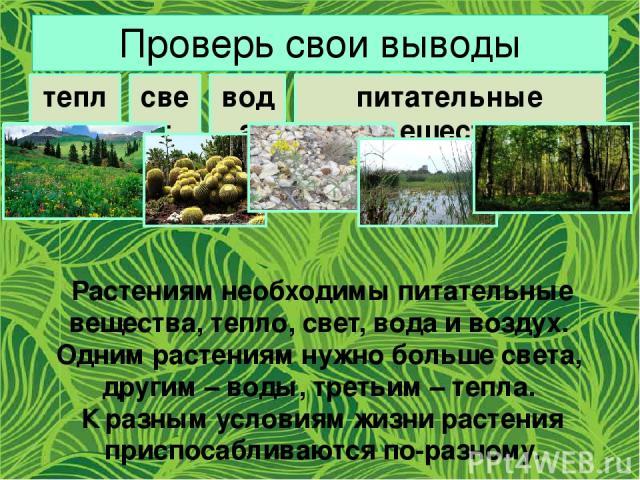 Проверь свои выводы тепло свет вода питательные вещества Растениям необходимы питательные вещества, тепло, свет, вода и воздух. Одним растениям нужно больше света, другим – воды, третьим – тепла. К разным условиям жизни растения приспосабливаются по…