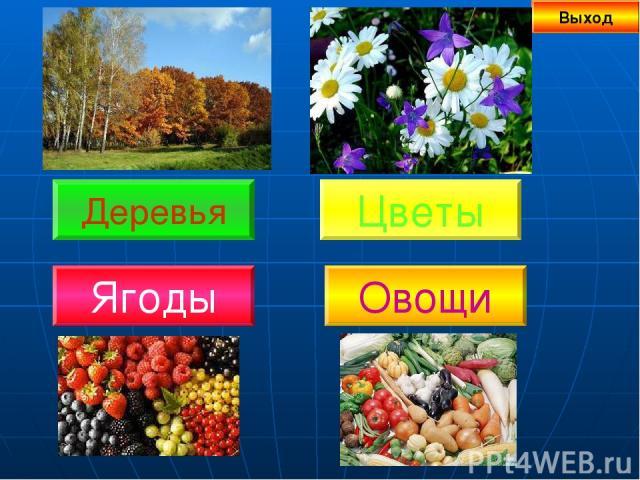 Деревья Выход Цветы Овощи Ягоды