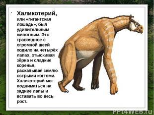 Халикотерий, или «гигантская лошадь», был удивительным животным. Это травоядное