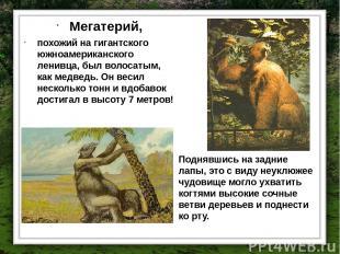 Мегатерий, похожий на гигантского южноамериканского ленивца, был волосатым, как