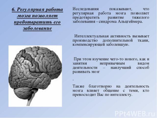 6. Регулярная работа мозга позволяет предотвратить его заболевание Исследования показывают, что регулярная работа мозга позволяет предотвратить развитие тяжелого заболевания - синдрома Альцгеймера. Интеллектуальная активность вызывает производство д…
