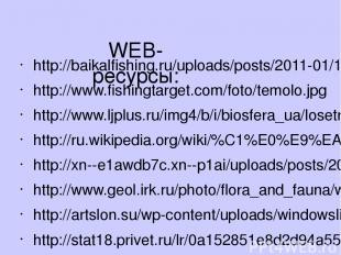 WEB-ресурсы: http://baikalfishing.ru/uploads/posts/2011-01/1296277358_coregonus2