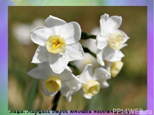 У речного бога Кефисса и у нимфы Лириоэссы был сын, прекрасный юноша, который от