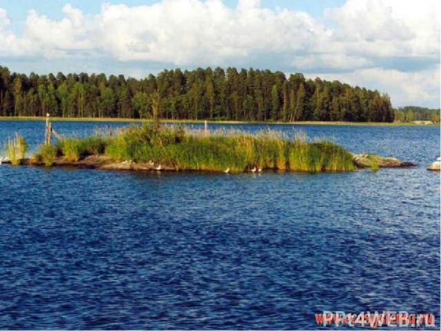 Поверхность земли неровная. На ней есть углубления. В эти углубления набирается вода от дождей и тающего снега, из подземных ключей, ручьёв и речек. Так может образоваться озеро. Озеро – это природное углубление в суше, заполненное водой.