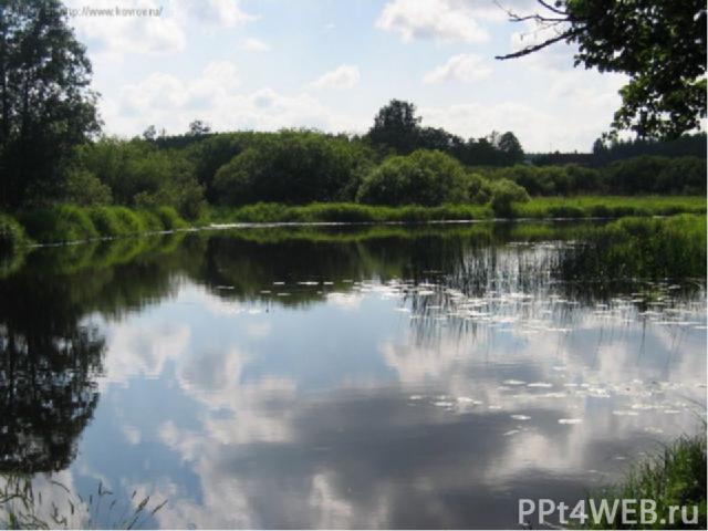 А чем отличается пруд от озера? Оба водоёма расположены в углублениях. Но озеро никто не устраивал, это естественный водоём. А как образуется пруд? Вспомните, как весной вы делали на ручейках маленькие пруды. Объясните, что нужно построить, чтобы по…