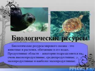 Биологические ресурсы мирового океана - это животные и растения, обитающие в его