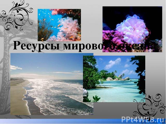 Ресурсы мирового океана