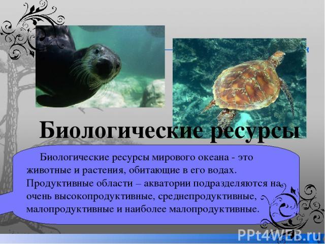 Биологические ресурсы мирового океана - это животные и растения, обитающие в его водах. Продуктивные области – акватории подразделяются на очень высокопродуктивные, среднепродуктивные, малопродуктивные и наиболее малопродуктивные. Биологические ресурсы