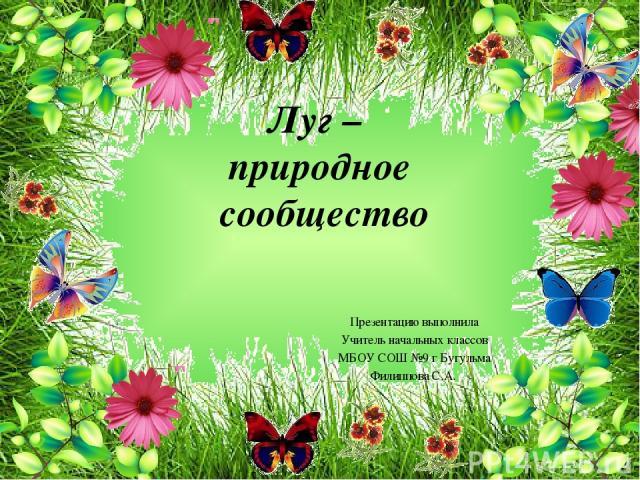 Луг – природное сообщество Презентацию выполнила Учитель начальных классов МБОУ СОШ №9 г Бугульма Филиппова С.А.