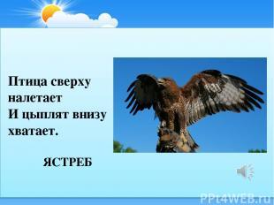 ЯСТРЕБ Птица сверху налетает И цыплят внизу хватает.